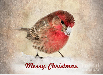 Christmas Card 8 Print by Betty LaRue