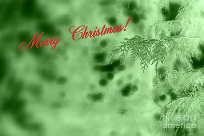 Photograph - Christmas Card In Green by Leone Lund