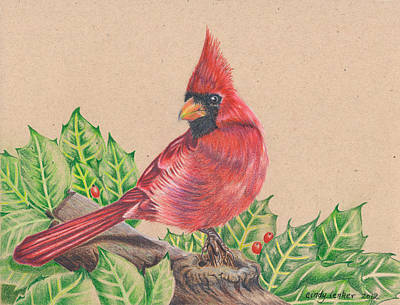 Berry Drawing - Christmas Cardinal by Cindy Lenker