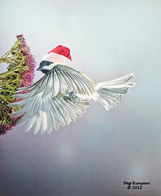 Photograph - Christmas Chickadee by Peg Runyan
