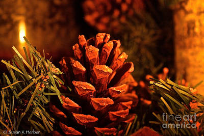 Photograph - Christmas Cone by Susan Herber