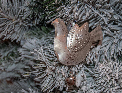 Photograph - Christmas Decoration 1 by Tam Ryan