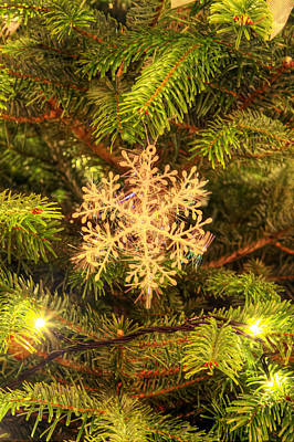 Gold Leaf Ring Photograph - Christmas Decoration Hanging On The Christmas Tree by Fizzy Image