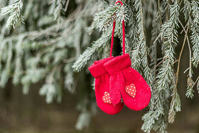 Photograph - Christmas Decorations Hanging On A Frosty Tree II by Aldona Pivoriene