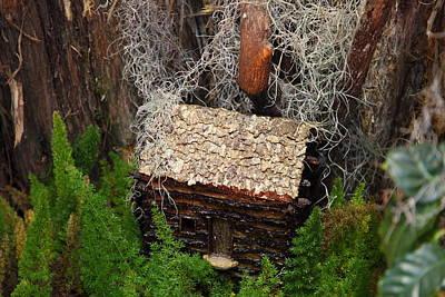 Garden Photograph - Christmas Display - Us Botanic Garden - 011343 by DC Photographer