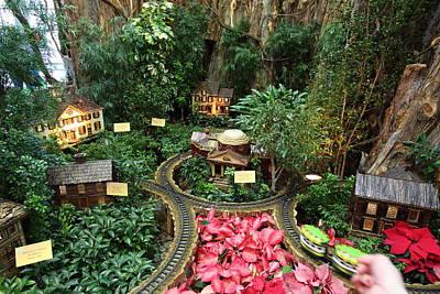 House Photograph - Christmas Display - Us Botanic Garden - 011346 by DC Photographer