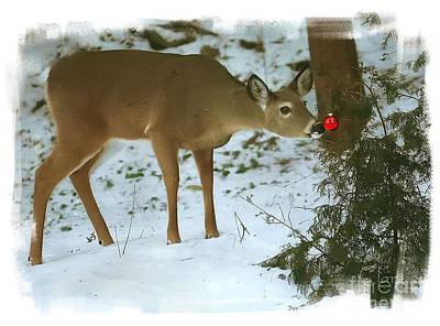 Christmas Doe Art Print by Clare VanderVeen