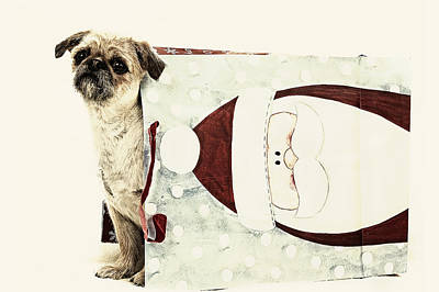 Digital Art - Christmas Dog by Susan Stone