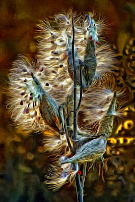 Common Milkweed Photograph - Christmas Floozy - Paint 2 by Steve Harrington