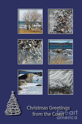 Photograph - Christmas Greetings From The Coast by Randi Grace Nilsberg