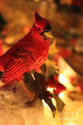 Photograph - Christmas Image V by Terri Thompson