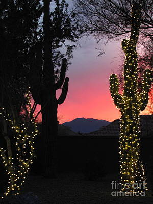 Christmas Cactus Photograph - Christmas In Arizona by Marilyn Smith
