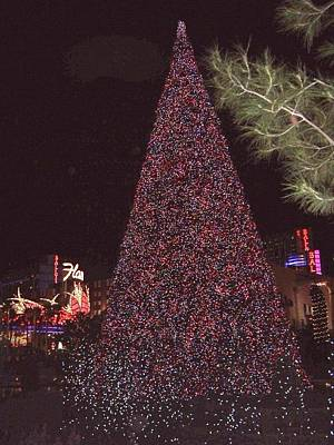 Photograph - Christmas In Las Vegas by Charlayne Grenci