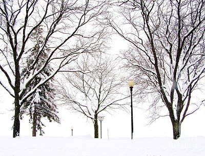 Art Print featuring the photograph Christmas In Skaneateles by Margie Amberge
