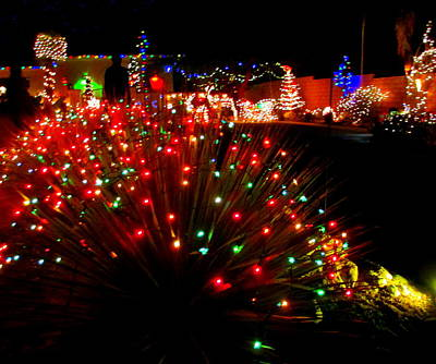Photograph - Christmas In The Desert by Randall Weidner