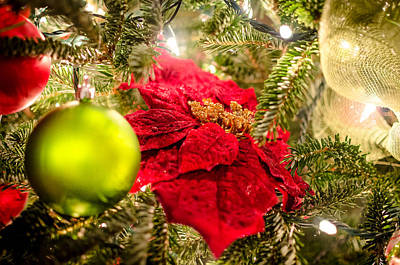 Photograph - Christmas Is In The Air by David Morefield