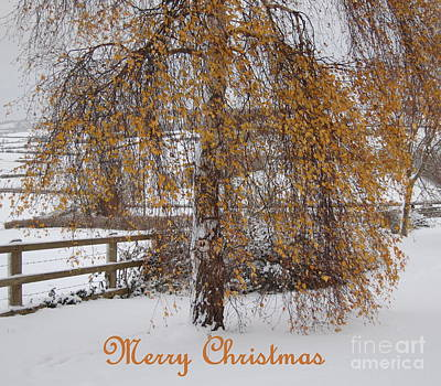 Christmas Is Orange Art Print