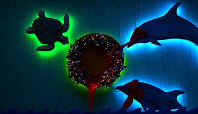 Green Sea Turtle Photograph - Christmas Island Style by David Lee Thompson