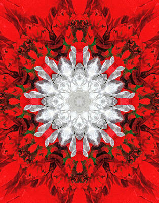 Photograph - Christmas Kaleidoscope I by Dawn Currie