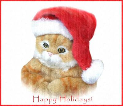 Photograph - Christmas Kitty by Living Color Photography Lorraine Lynch