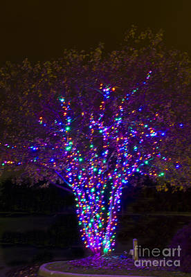 Photograph - Christmas Light Series No 3  Multi Green Purple by Bill Woodstock