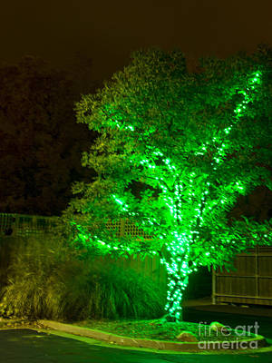Photograph - Christmas Light Series No 5  Green by Bill Woodstock