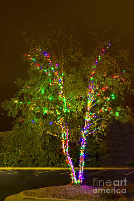 Photograph - Christmas Light Series No 7  Multicolor V Shape by Bill Woodstock