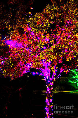 Photograph - Christmas Light Series No 8  Pink And Gold by Bill Woodstock
