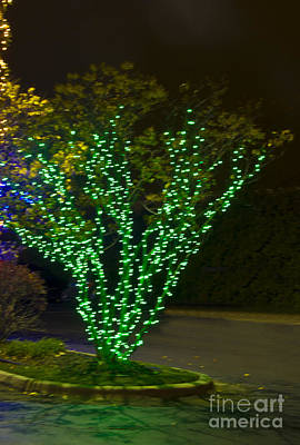 Photograph - Christmas Light Series No 9  Green V Shape by Bill Woodstock