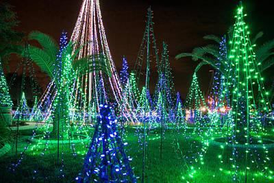 Photograph - Christmas Lights 2 by Richard Goldman