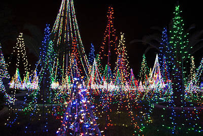 Photograph - Christmas Lights 3 by Richard Goldman