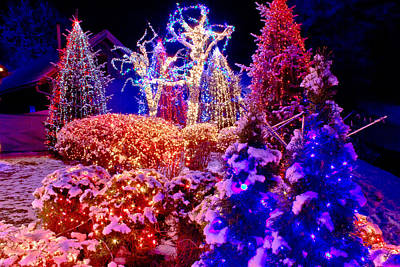 Photograph - Christmas Lights In The Park by Brch Photography