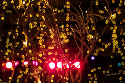 Photograph - Christmas Lights by Mick Anderson