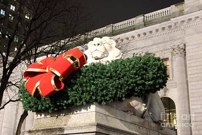 Photograph - Christmas Lion by Mary Haber
