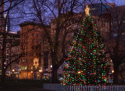 Christmas On The Boston Common Art Print by Joann Vitali