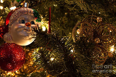 Photograph - Christmas Ornaments by Lawrence Burry