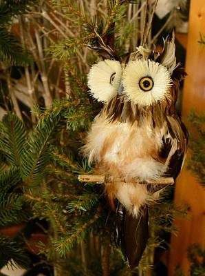 Fake Owl Photograph - Christmas Owl by Krystal Goldie