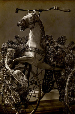 Photograph - Christmas Pony by Wayne Meyer