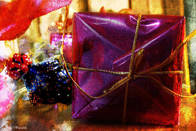 Photograph - Christmas Present by Debra Forand