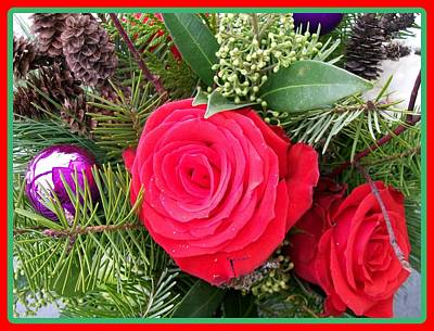 Photograph - Christmas Rose Bouquet  by Sharon Duguay