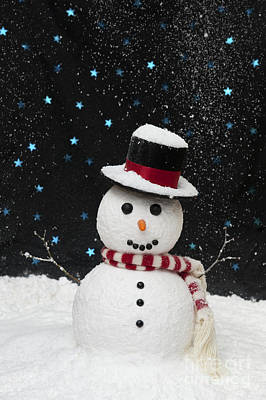 Photograph - Christmas Snowman by Tim Gainey