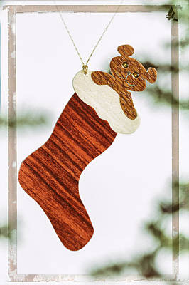 Photograph - Christmas Stocking Holiday Image Art by Jo Ann Tomaselli