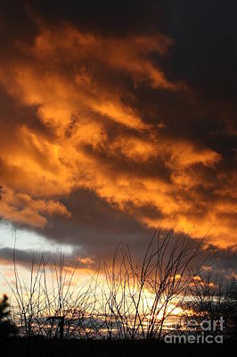 Photograph - Christmas Sunset by Jeremy Hayden