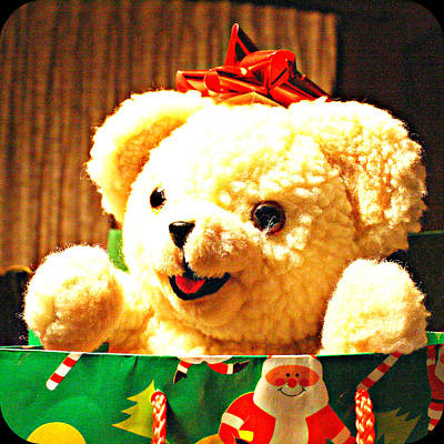 Digital Art - Christmas Teddy Bear by Holley Jacobs