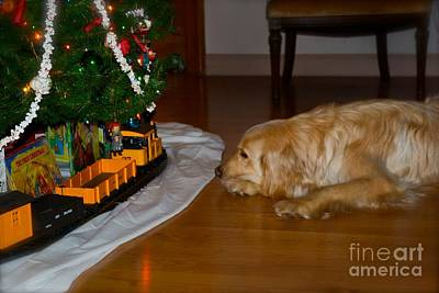 Frank J Casella Royalty-Free and Rights-Managed Images - Christmas Train by Frank J Casella