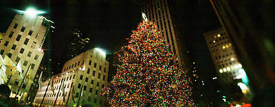 Illuminated Photograph - Christmas Tree Lit Up At Night by Panoramic Images