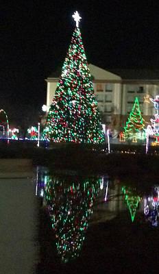 Photograph - Christmas Tree Reflection by Amazing Photographs AKA Christian Wilson