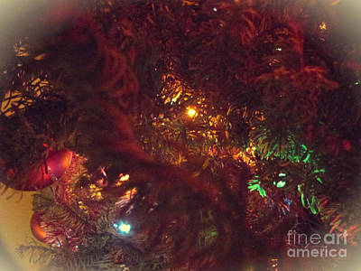 Photograph - Christmas Tree Series 4 by Serena Ballard