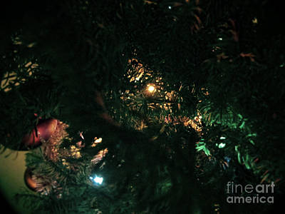 Photograph - Christmas Tree Series 5 by Serena Ballard