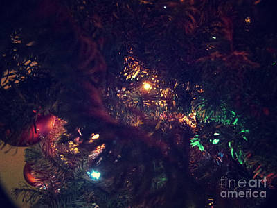 Photograph - Christmas Tree Series 6 by Serena Ballard